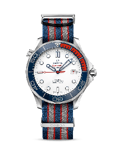 DIVER 300M CO‑AXIAL 41 MM Commander's Watch